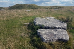 A stone at Arbor Low